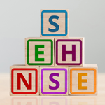 SEHNSE