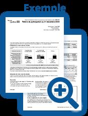 Relevé de participation aux régimes de retraite du secteur public (RREGOP, RRPE, etc.) - PDF